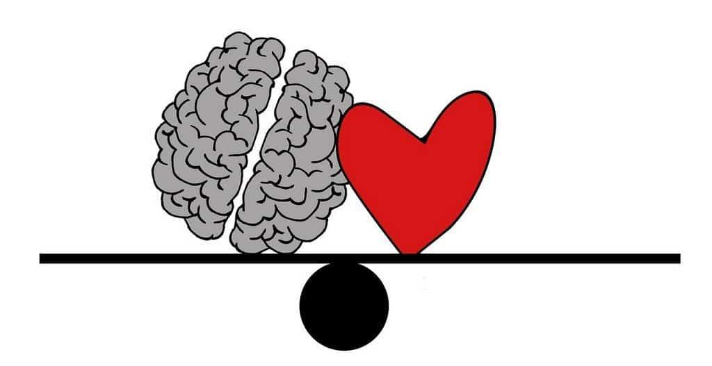 heart and brain on a balance