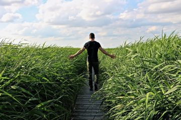 Man walking through path in long grass - Blessed