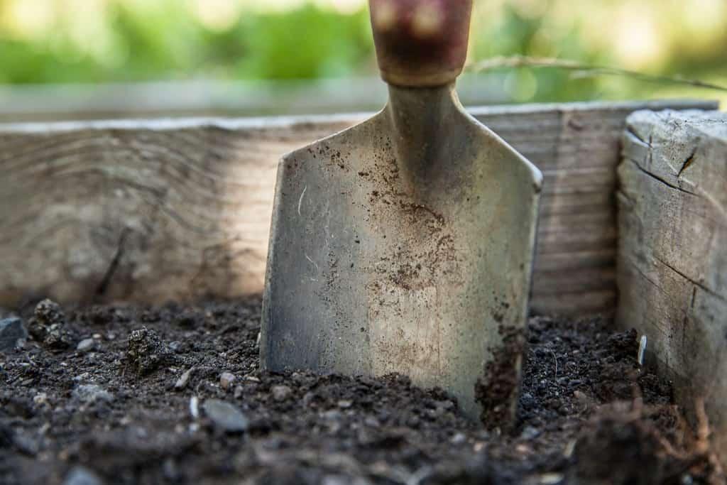 Gardening spade in earth