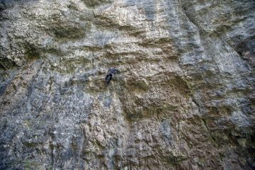 Person climbing bedrock - Acceptance is tricky