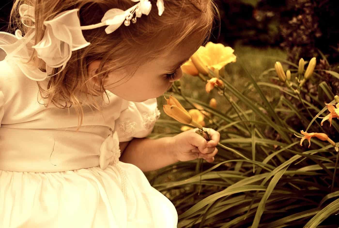 Little girl in fancy dress smelling flower - The law of observation