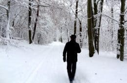 Man walking in snow - Poems by John Grey