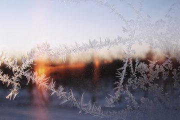 Window with frost looks out onto snow - Poems by John Grey