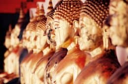Line of gold Buddha statues - Meditate on your pain