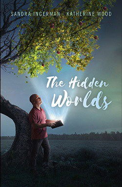 Front cover of novel - The Hidden Worlds