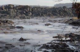Waste spill in Kingston, Ontario pond - The Hidden Worlds