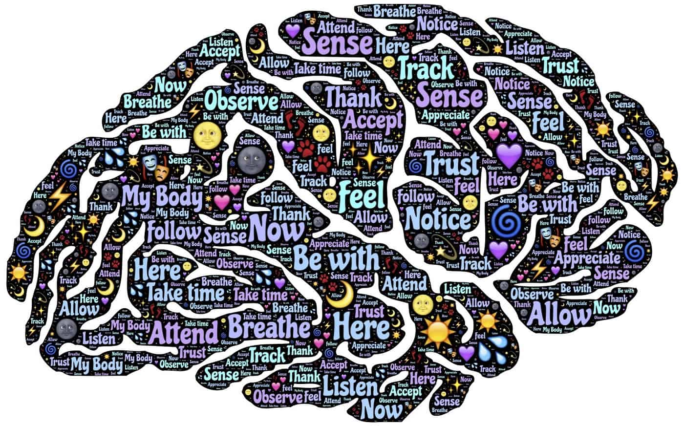 Drawing of brain with words and icons about meditation on it - Meditation club