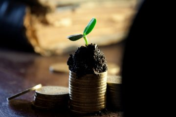 Small plant growing on top of stack of gold coins