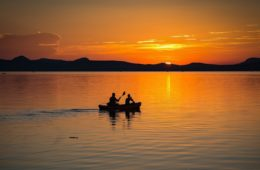 two rowers gliding at sunset