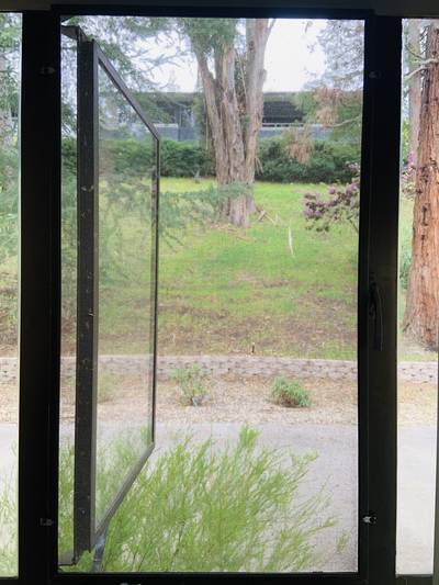 View of yard outside window